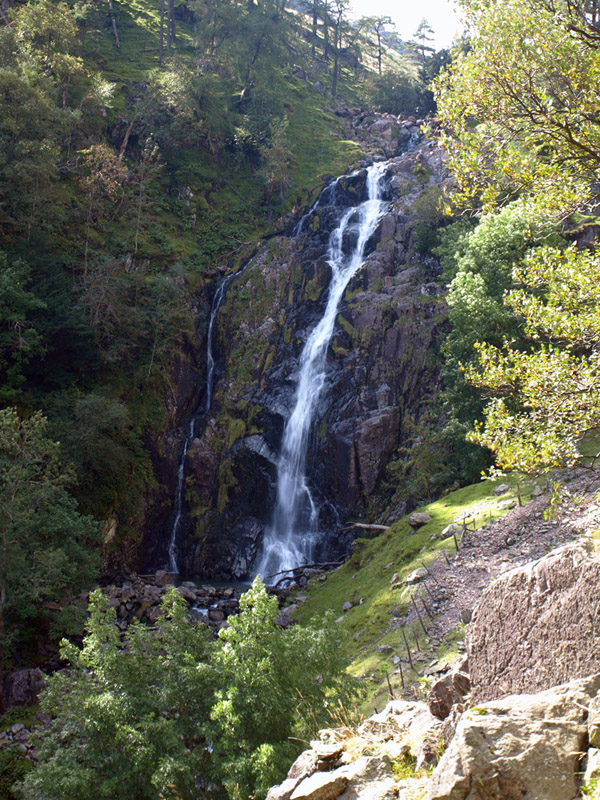 Taylorgill Force