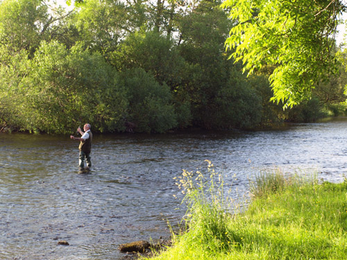 fly fishing in the Eamont