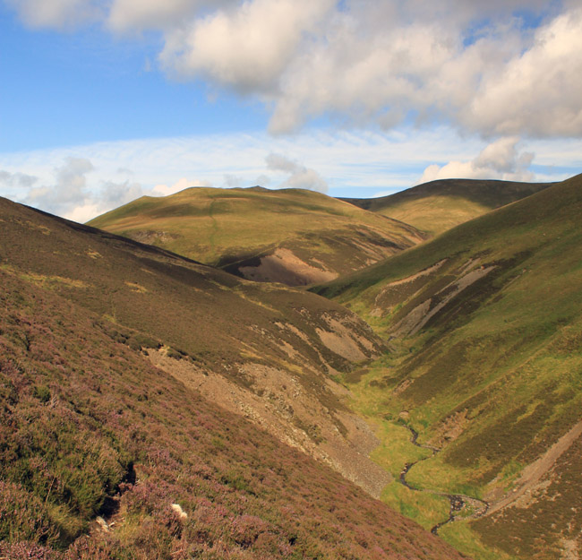 From Burntod Gill