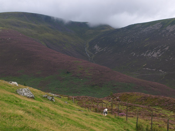 Caw Fell from Lingmell End