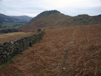 Helm Crag from Steel Fell