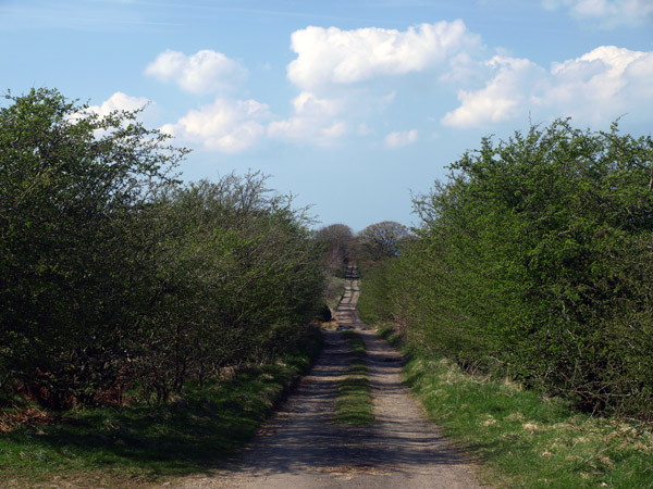 Lorton to Mosser green lane