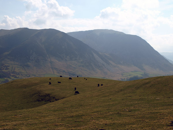 Grasmoor from Fellbarrow