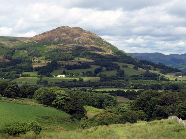 Low Fell from above Highnook Farm