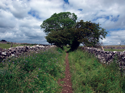 The Limestone Way in the lane to Wheston