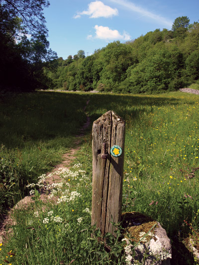 waymark on post in Peter Dale