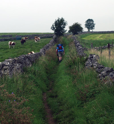 Walkers' on the Limestone Way