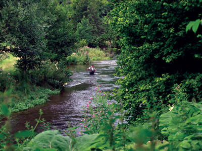 Wye near Shacklow Mill