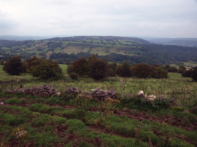 Stanton Moor from Luntor Rocks