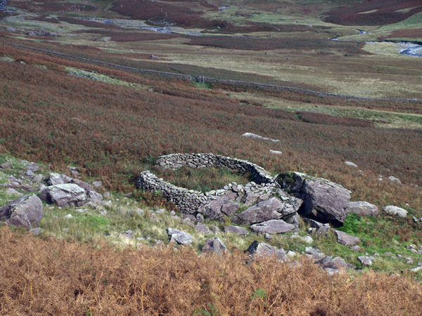 Sheepfold on the lower Mosedale flanks of Red Pike