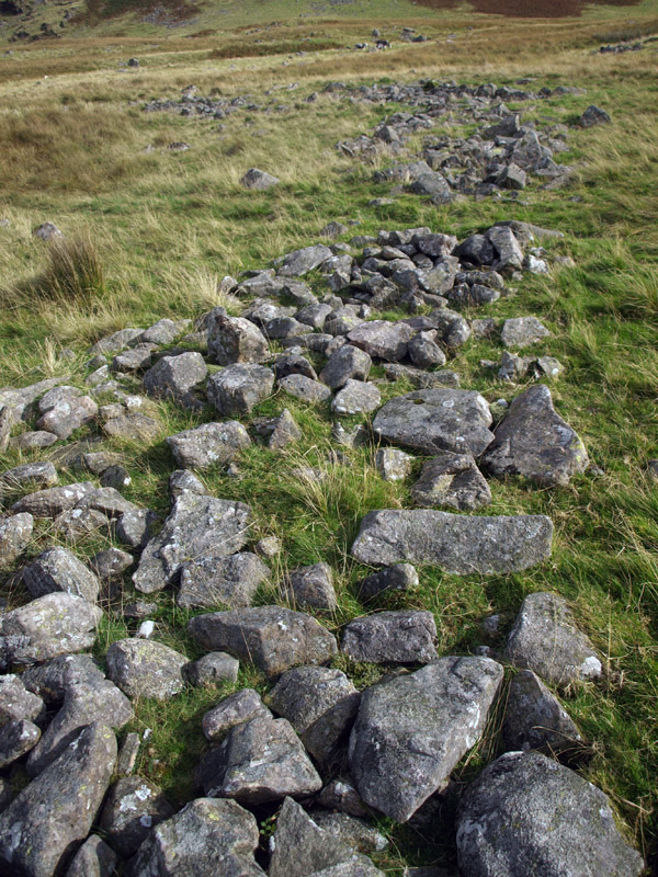 Viking ring garth in upper Blengdale