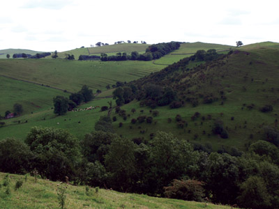 Medieval cultivation terracing on the east side of Oldpark Hill, in view from Larkstone Lane