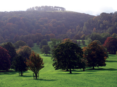 Hazelton Clump rising above Hinkley Wood and the ridge and furrow lined Ilam Park