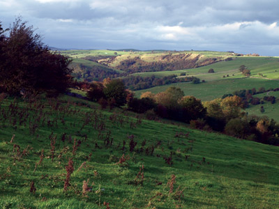 Castern Wood and Bincliff, the Manifold valley from above Musden Grange