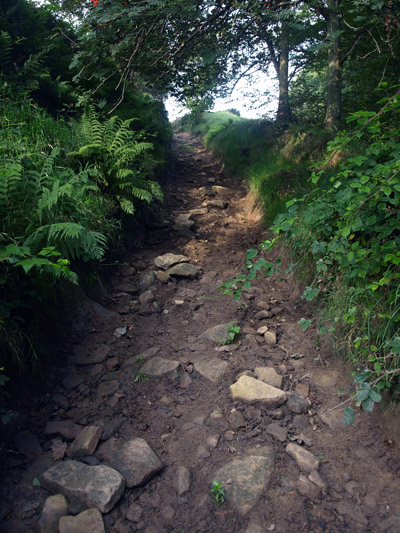 Sunken and vehicle damaged bridle-lane leading out of Hollinsclough