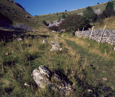 Mid-section of Biggin Dale nature reserve