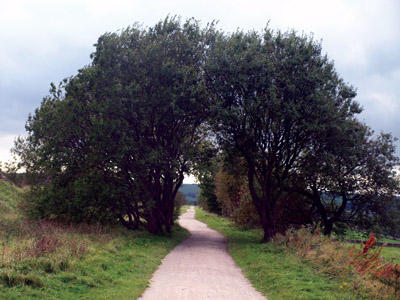 View south along the Tissington Trail at Alsop Moor