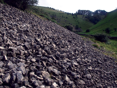 Natural scree in upper Biggin Dale
