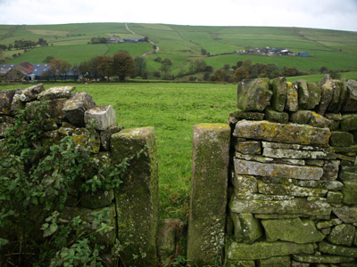 Meadows wall-stile