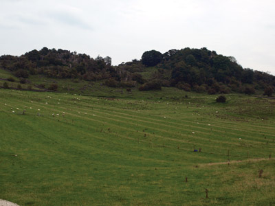 Pasture-preserved ridge and furrow at Rainster Rocks