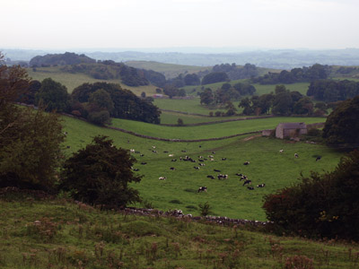 Hoe Grange landscape from the Trail