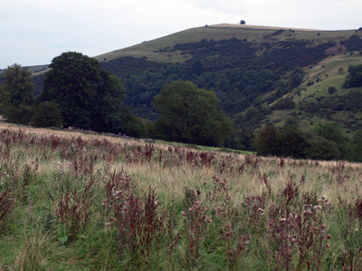 Ecton Hill from the footpath to Clayton House