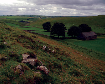 Saddle pasture on Wetton Hill