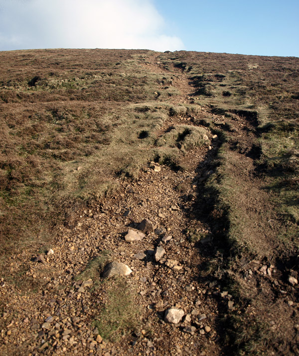 Inevitable erosion when everyone keeps to one path, even when they don't have to!