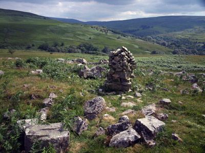 cairn and King's Forest